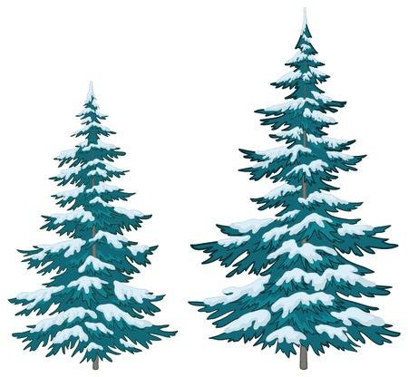 arbre     ? � feuillage persistant: Vecteur, arbres de No�l sous la neige sur un fond blanc