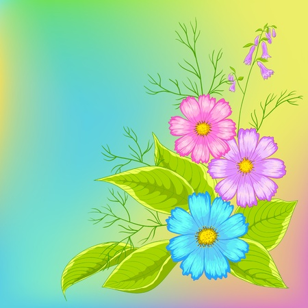 Flower background, cosmos flowers on green and yellow. Vector