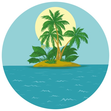 coconut palm: Tropical sea island with palm trees and sun