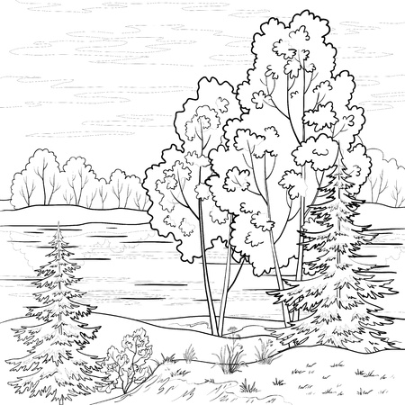 lake shore: Vector, landscape: forest, river and sky with clouds, contour Illustration