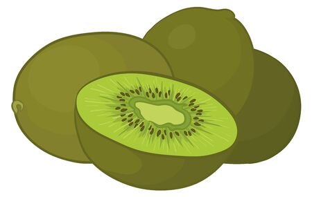sliced fruit: Food, kiwi fruit on a white background, vector