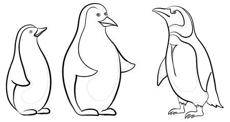 Antártida los pingüinos emperador, los contornos de negro sobre fondo blanco. Vector