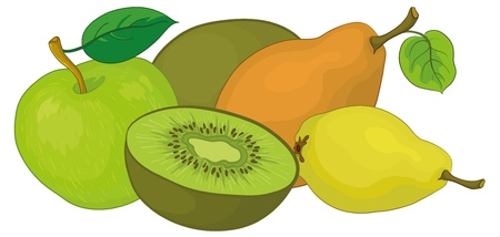 Still life, food, fruits on a white background: pears, kiwi, apple. Vector Stock Vector - 11529432
