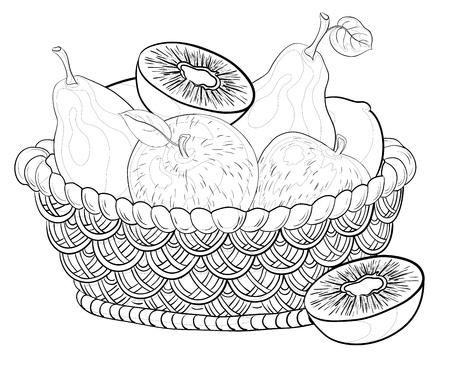 canasta de frutas: Naturaleza muerta, contornos: cesta wattled con frutas dulces: manzanas, peras, kiwi. Vectores