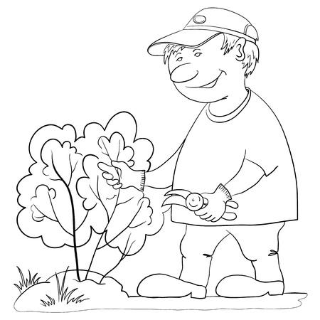 arboles blanco y negro: Jardinero hombre trabaja en un jardín, corta un arbusto con tijeras de podar, el contorno Vectores