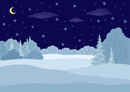 snow field: Landscape: winter forest night, coniferous and deciduous trees under stars