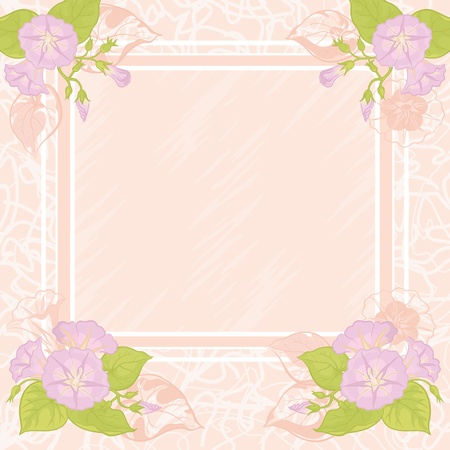 ipomoea: Pink - white background with frame and flowers Ipomoea. Vector