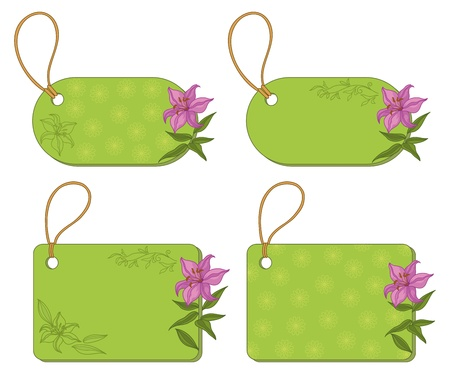 Set green labels tags with floral pattern and ropes on white background  Vector