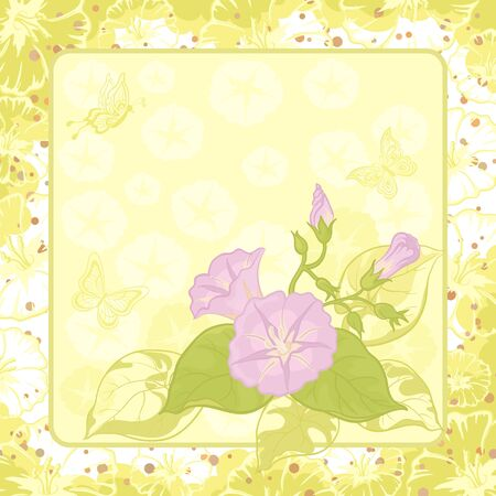 Ipomoea flowers and butterfly silhouettes on yellow and green background  Vector photo