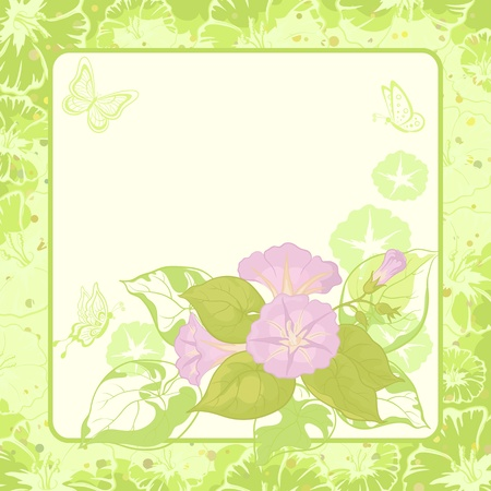 morning glory: Ipomoea flowers and butterfly silhouettes on green background Illustration