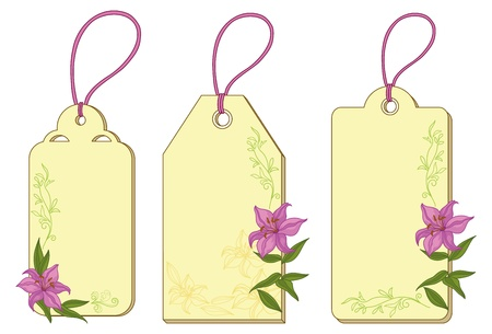 Set labels tags with lily, floral pattern and ropes  Vector