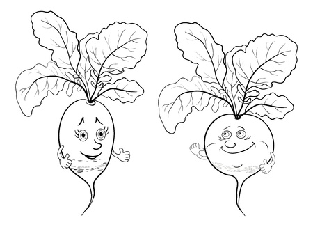 Cartoon, vegetables, two character radish, black contour on white background  Vector illustration Stock Vector - 14066745