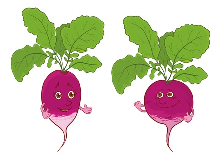 tuber vegetables: Cartoon, vegetables, two character radish isolated on white background Illustration
