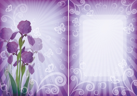 Flower background for greetings card with iris, butterflies, rays, frame and figures   Vector