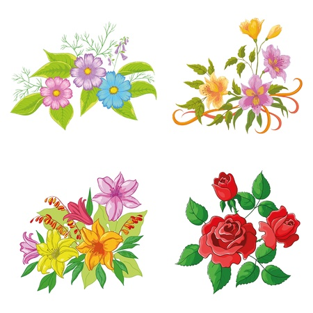 Set of flowers isolated on white background  rose, lily, cosmos, alstroemeria   Illustration