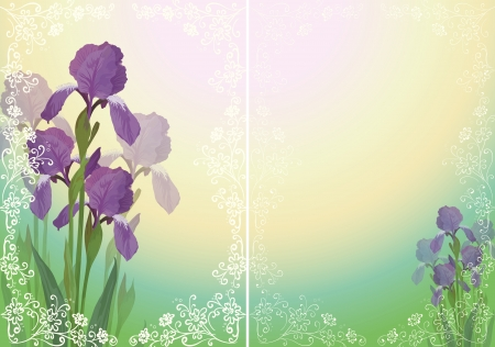 iris flower: Background for greetings card with flower iris and floral outline pattern  Vector eps10, contains transparencies