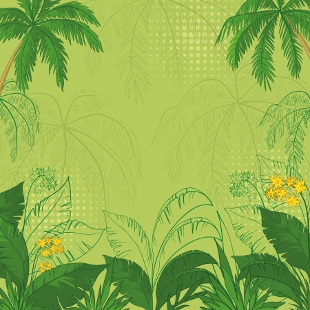 palm tree silhouette: green flower background with tropical flowers, palm trees leaves and contours  Vector illustration Illustration