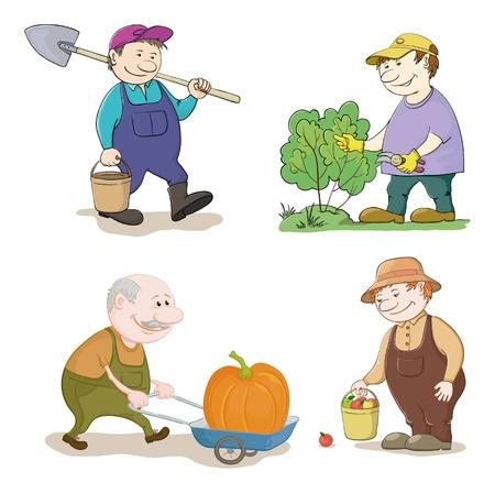 agricultor: Jardineros Cartoon trabajar con un cubo y la pala, corta un arbusto con secador, lleva carro con la calabaza, con la cosecha de las manzanas ilustraci�n vectorial