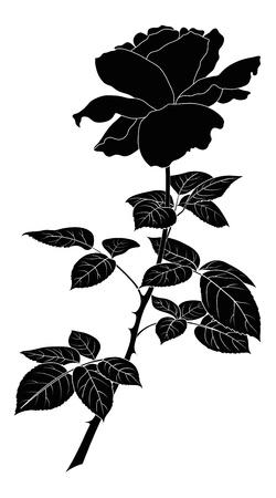 バラの花、花びらや葉、図は白い背景に黒いシルエット
