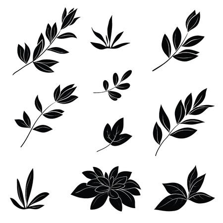 yeşillik: Çeşitli bitkilerin yaprakları, beyaz arka plan resimde siyah siluetleri seti