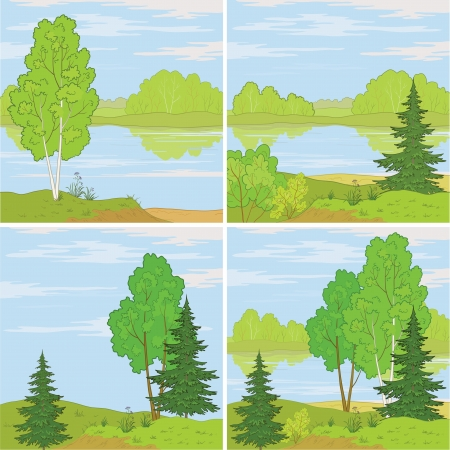 conifers: Set summer landscapes  forest, river and the blue sky with white clouds  Vector Illustration