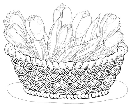 Wattled basket with flowers lily and leaves, contours  Vector Vector