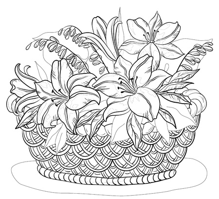 botanic: Vector, contours, wattled basket with flowers lily and leaves