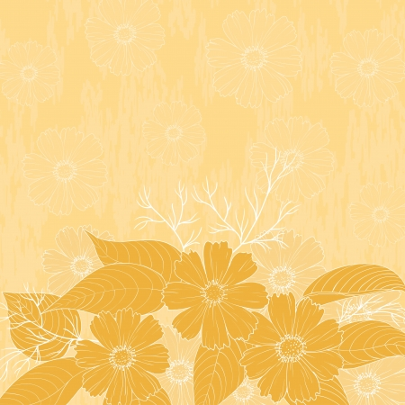 cosmos flowers: Floral background, cosmos flowers and leaves, contour and silhouette   Illustration