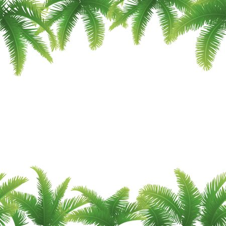 Seamless background, green branches with leaves of palm trees photo