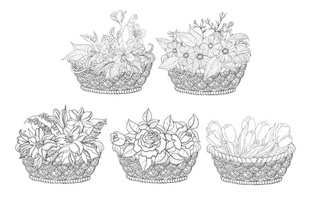 Wattled basket with flowers  alstroemeria, cosmos, lily, rose and tulip  Black contour on white background   Vector