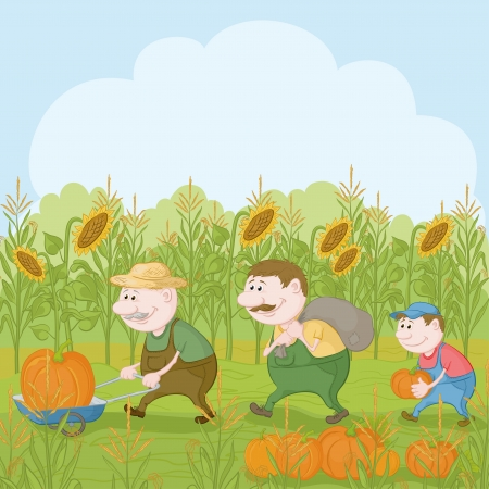 corn fields: Cartoon farmers  grandfather, son and grandson harvest pumpkins