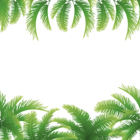 tropical evergreen forest: Seamless background, green branches with leaves of palm trees