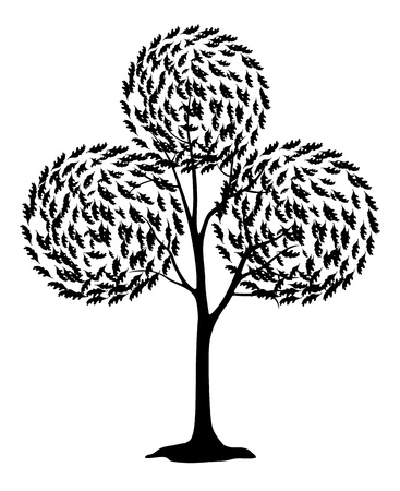 bucolical: Abstract tree with round crown, black contour on white background  Vector