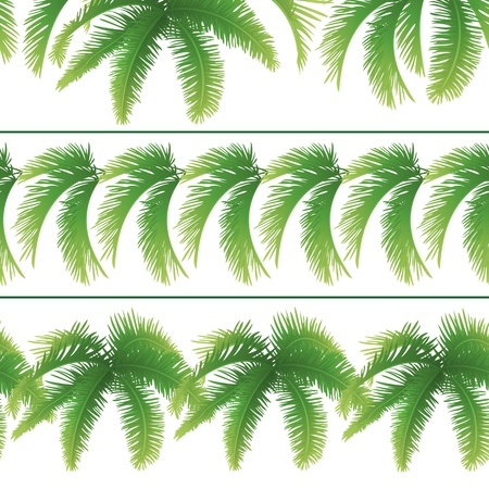 palm branch: Set seamless patterns, green branches with leaves of palm trees  Vector