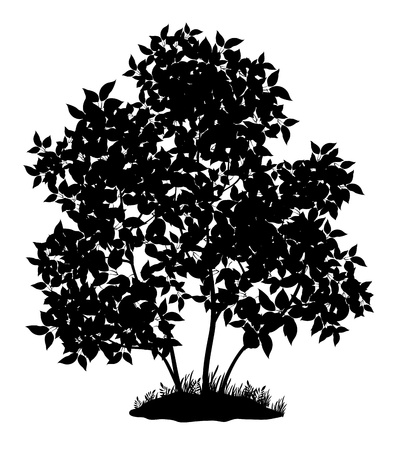 Lilac tree with leaves and grass, black silhouette on white background