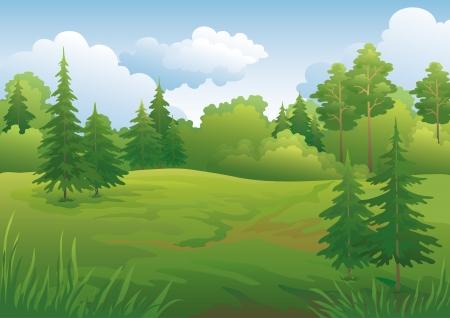 風景夏緑森林と青い空イラスト
