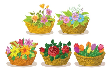 Wattled basket with flowers  alstroemeria, cosmos, lily, rose and tulip  Vector Vector