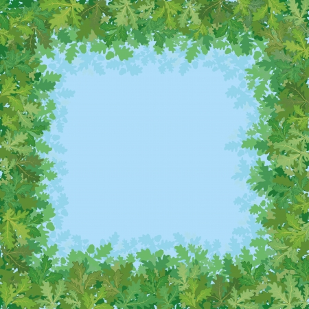 Background, green oak leaves against the blue sky   Vector
