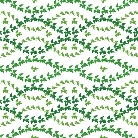Seamless pattern, maple green leaves, isolated on white background