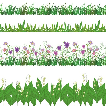 Set seamless of flowers and green grass, isolated on white background. Vector Vector