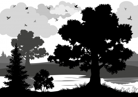 Landscape, trees, river and birds, black and grey silhouette contour on white background. Vector Vector