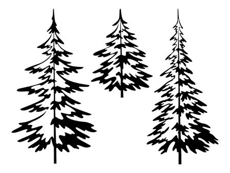christmas tree set: Christmas fir trees, symbolical pictogram, black contours isolated on white background. Vector Illustration
