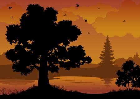 Avond contour zwart en oranje landschap: bomen, rivier en vogels. Vector