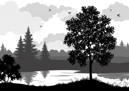 houtsoorten: Landschap, bomen, rivier en vogels, zwart en grijs silhouet contour op een witte achtergrond. Vector