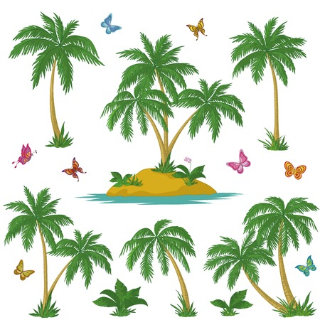 frond: Tropical set: sea island with plants, palm trees, flowers and butterflies. Vector