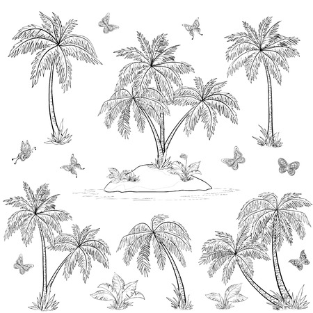 Tropical set: sea island with plants, palm trees, flowers and butterflies, black contours isolated on white background. Vector Illustration