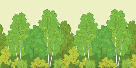 deciduous woodland: Seamless background, green summer forest with birch trees and bushes. Vector