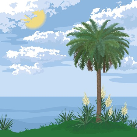 bloomer: Tropical sea island with palm trees, bloomer plants Yucca and sky with clouds and sun. Vector