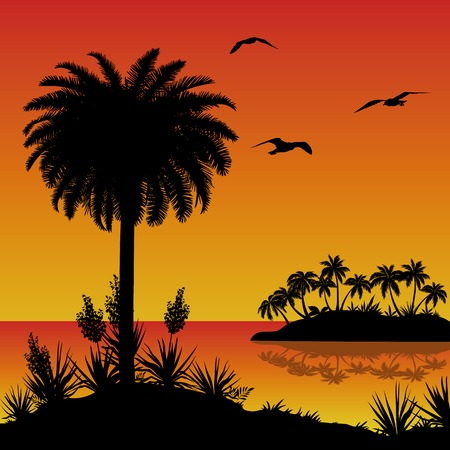 Tropical landscape, sea island with palm trees, bloomer plants Yucca and birds gulls, black silhouettes on red - yellow background. Vector Illustration