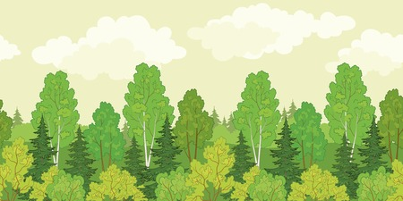 conifers: Seamless background, green summer forest with fir and birch trees and cloudy sky. Vector Illustration